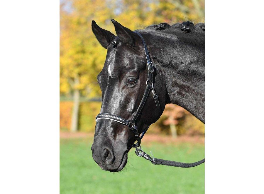 Halster leder Colour-Wave Zwart/Zilver Pony