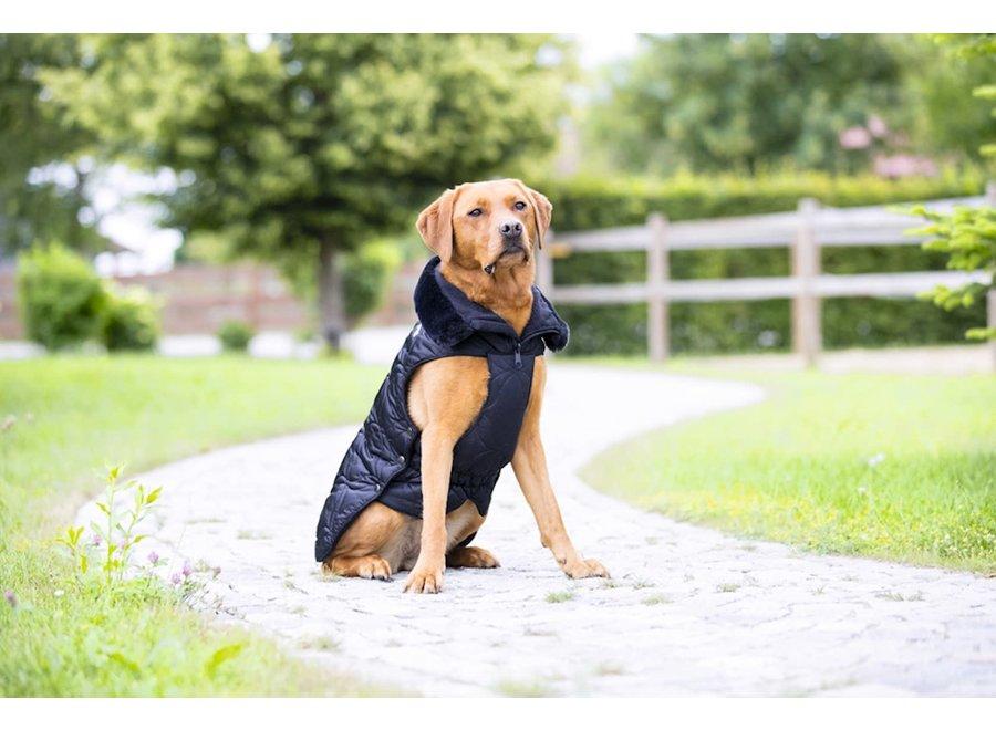 Hondenjas Platinum Glossy Zwart 55cm