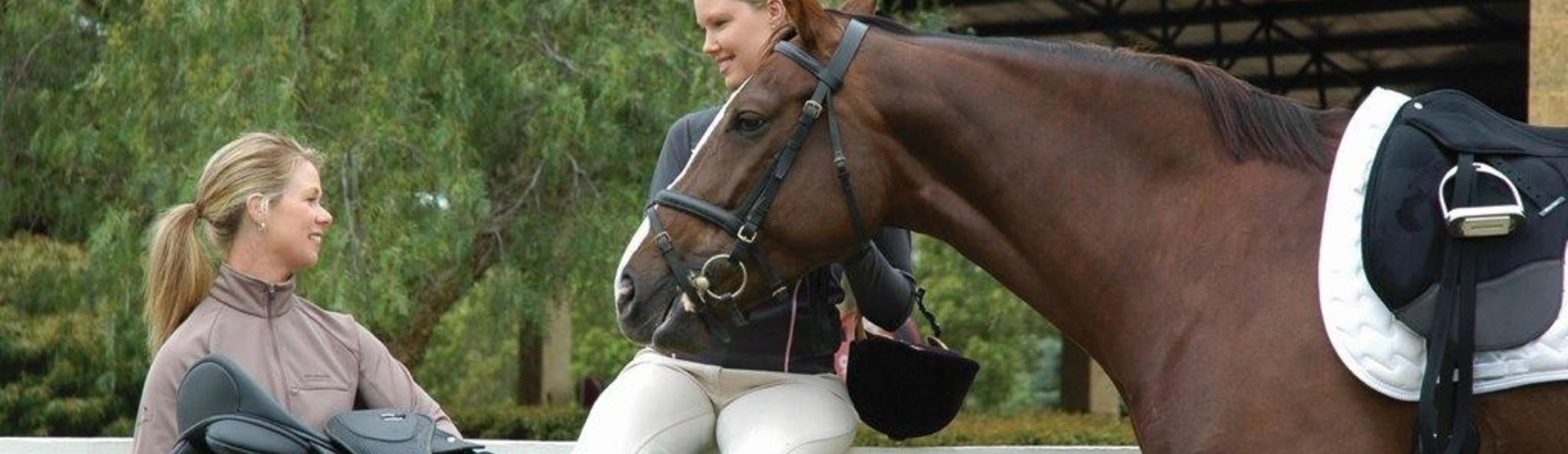 Het belang van een passend zadel voor paard en ruiter.