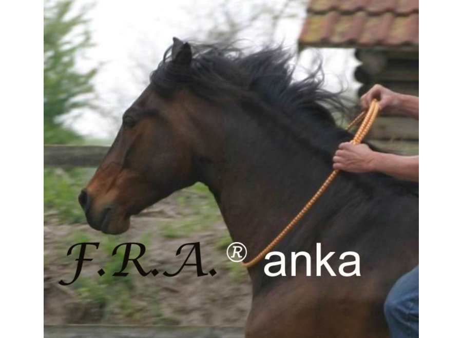 Anka Rijring 14mm