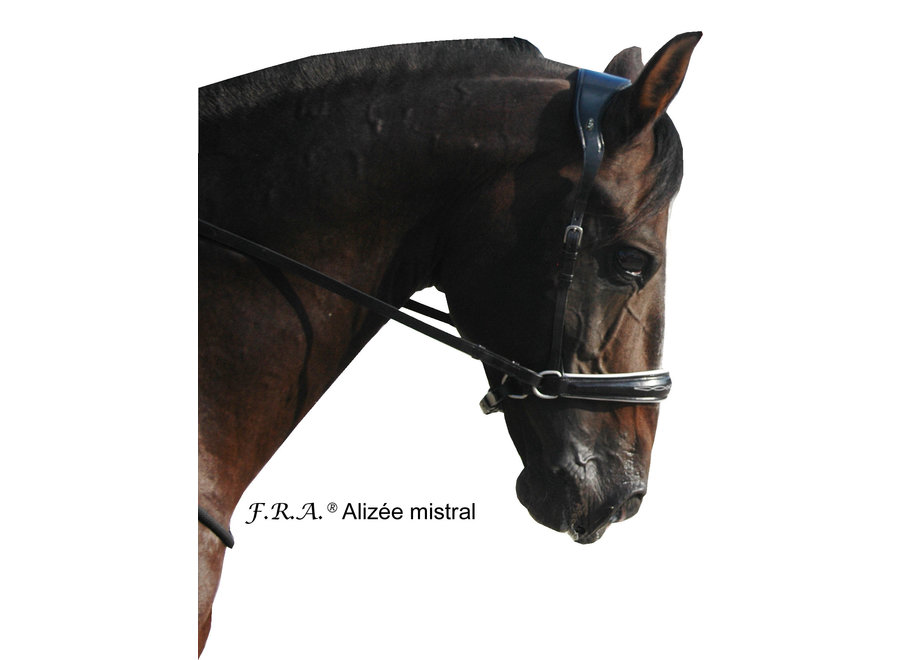 Alizee Mistral Hoofdstel - met teugels