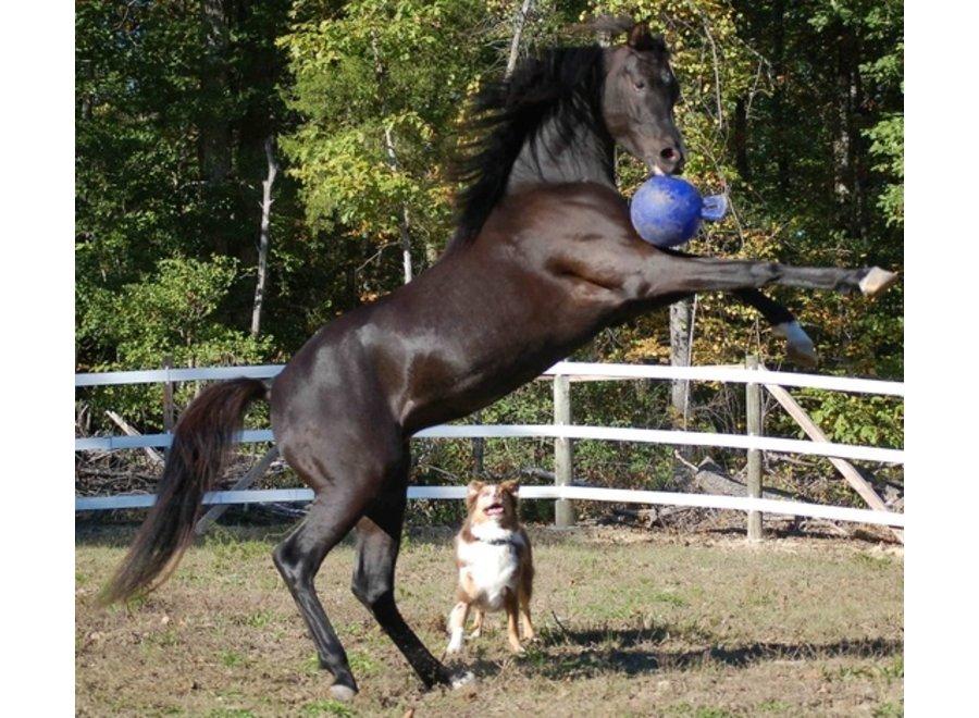 Speelbal Jolly Ball 20cm Paard en Hond