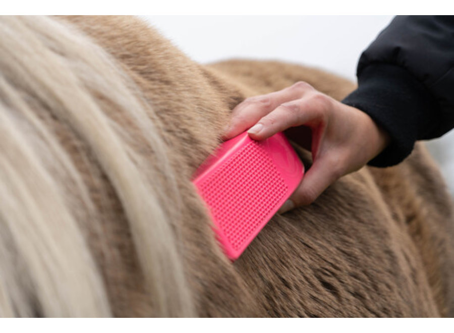 Grooming Borstel Excellent Horse