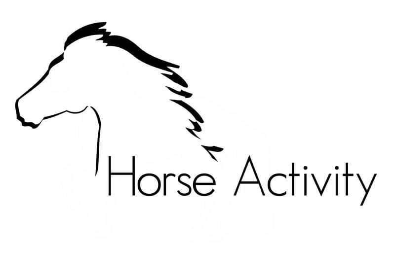 https://dre81.wixsite.com/horseactivity