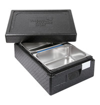 Thermo Future Box isoleer-ijsbox (cap.2x36x25cm)
