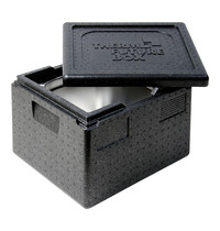 Thermo Future Box isoleerbox cap.GN1/2-100mm 325x265mm   330x390x180(h)mm
