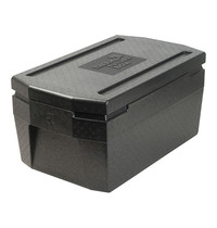Thermo Future Box isoleerbox cap.GN1/1-200mm 530x325mm   400x675x290(h)mm