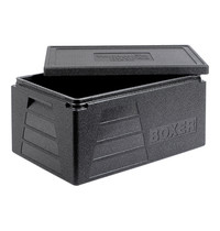 Thermo Future Box isoleerbox cap.GN1/1-200mm 530x325mm   400x600x290(h)mm