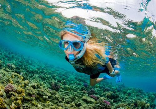 Snorkelling & Spearfishing