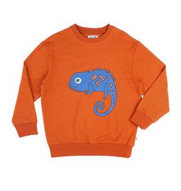 CarlijnQ CarlijnQ Chameleon boy - sweater