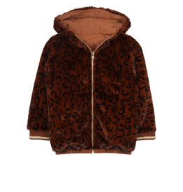 Ammehoela Jas Lola brown-leopard