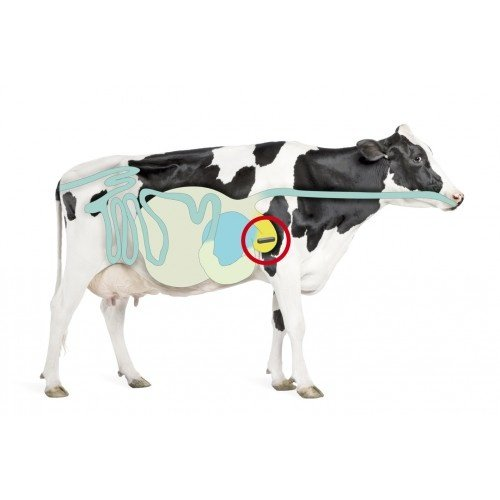 Topro Bolus Opti Trace Cow