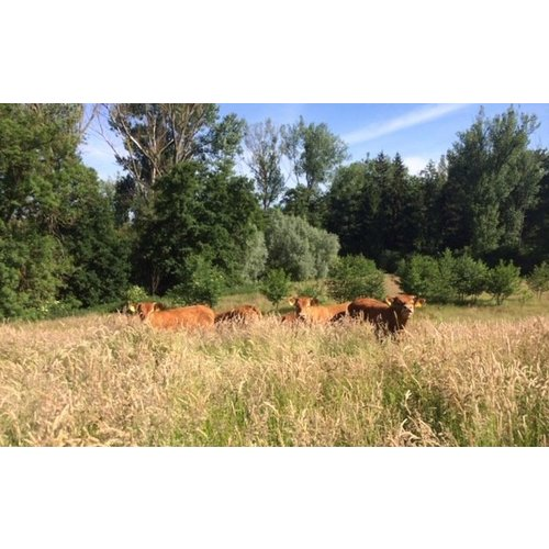 Natuurvlees NatuurvleesBox - Beter Leven 2 sterren