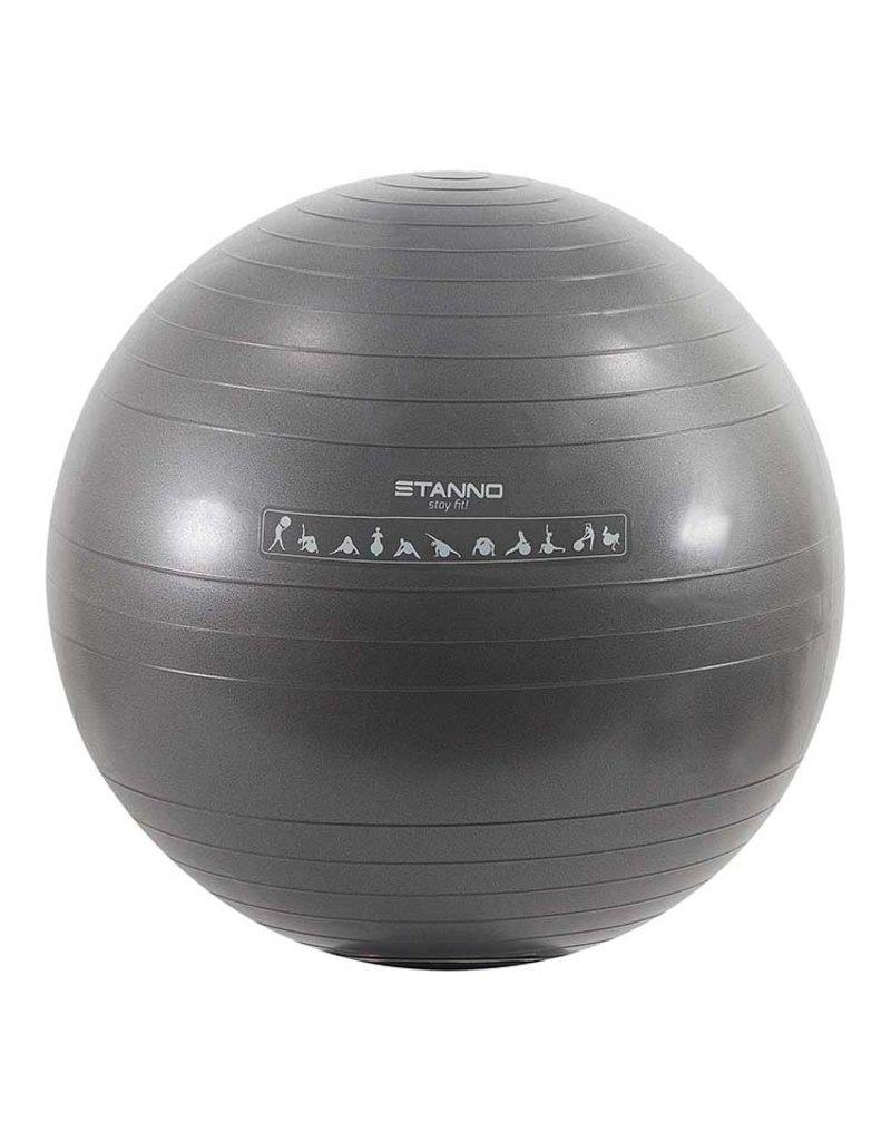 Stanno Yoga Bal (65 cm)
