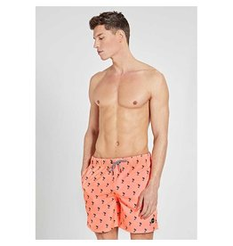 Shiwi Swim Shorts Palm Oranje