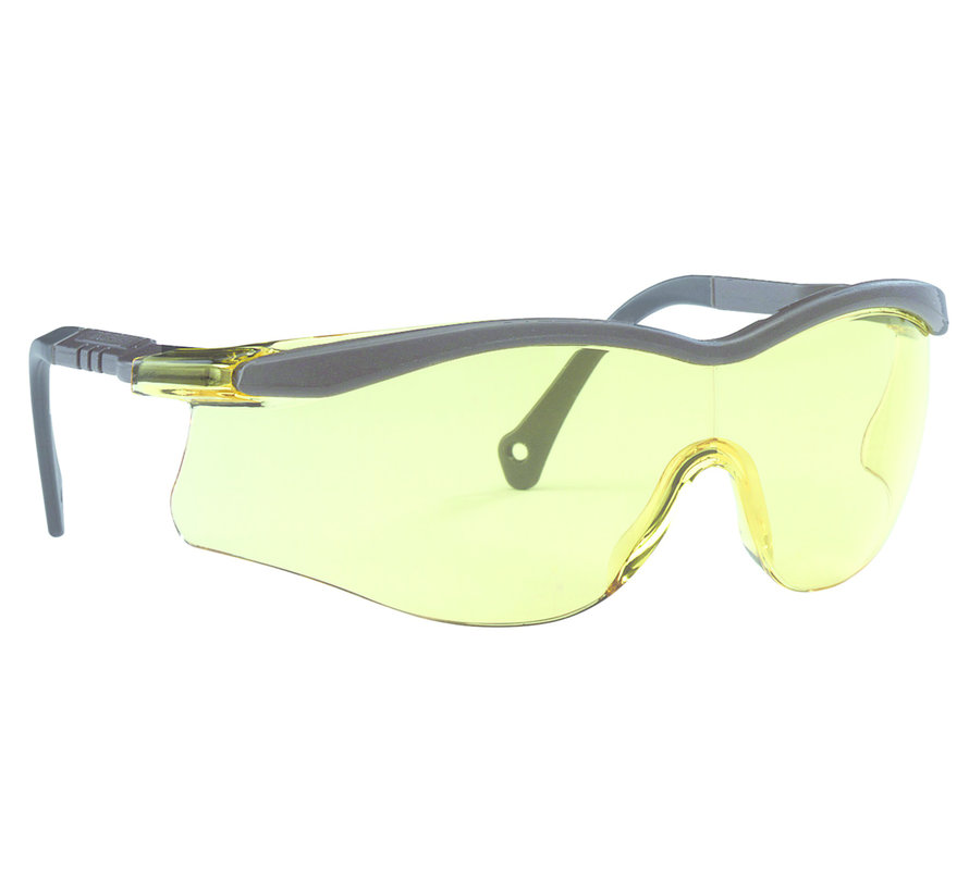 Veiligheidsbril Edge T5600 4A-coating amber grijze veren