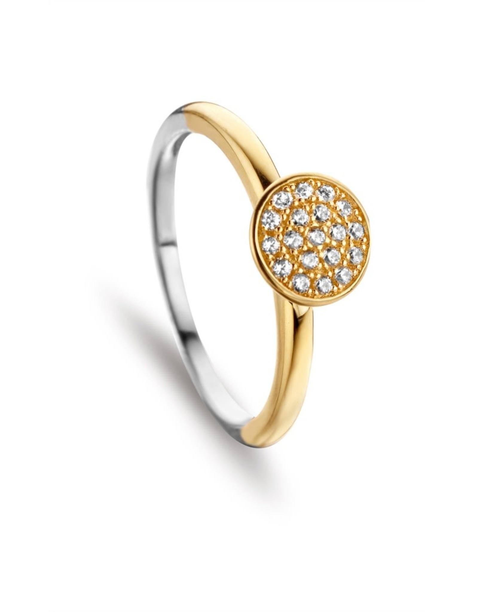 Silver Rose Ring Silver Rose Zilver goudkleurig R6368G-56