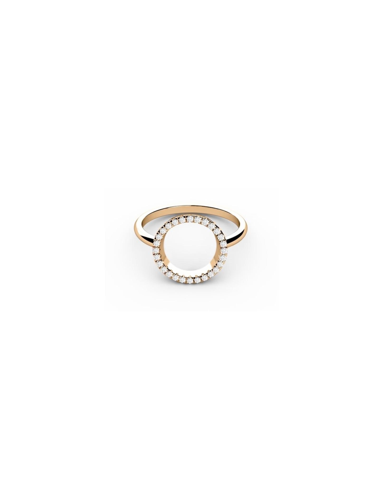 Diamanti Per Tutti Full Circle of Life Ring - 54 - Zilver Goudkleurig