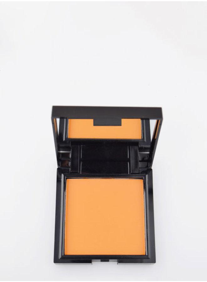 Face Powder 09