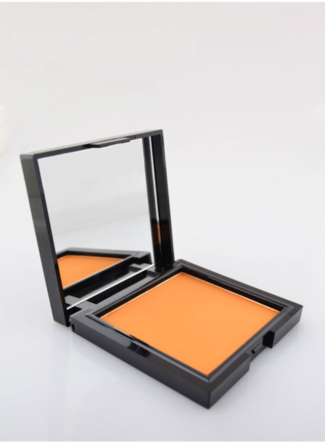 Face Powder 11