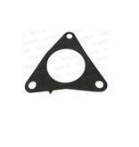 RecMar Parsun F50 Und F60 Gast, Exhaust Pipe (PAF60-02000013)