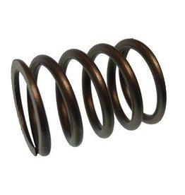 RecMar Parsun spring, valve ( PAF6-04050003)
