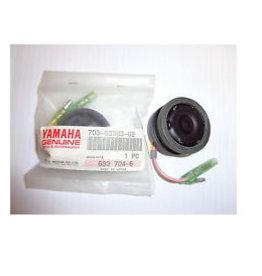 RecMar Yamaha / Parsun Summer Assy (703-83383-02-00) (PAF15-13000300W)