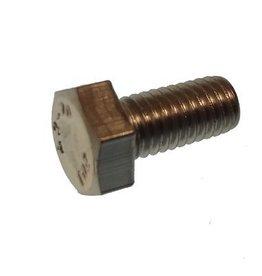 RecMar Parsun Bolt M5X10 (PAGB/T5783-M5x10)
