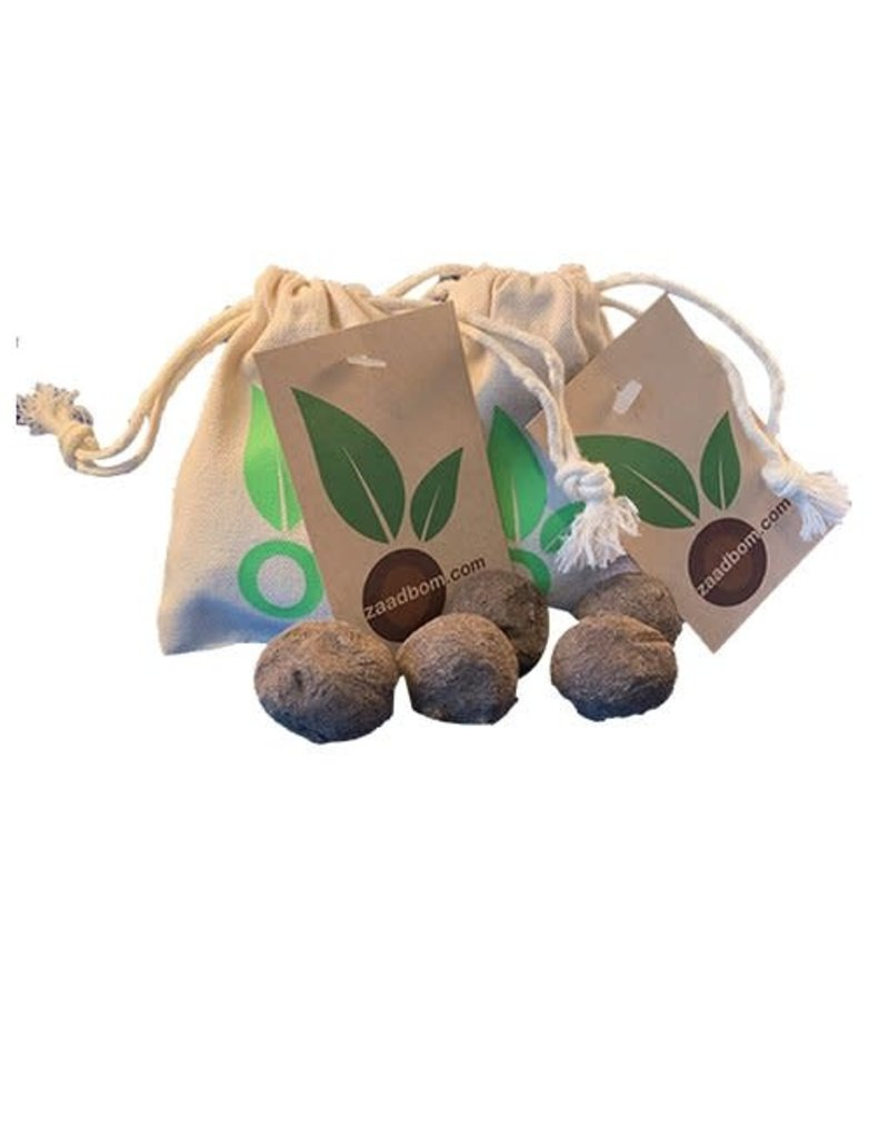 Zaadbom Zaadbom: 5 zaadbommen in een zakje: Wildbloemenmix