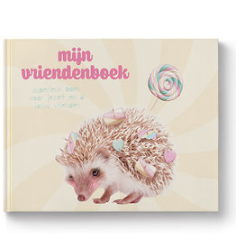 Enfant Terrible Enfant terrible vriendenboek sweet as candy