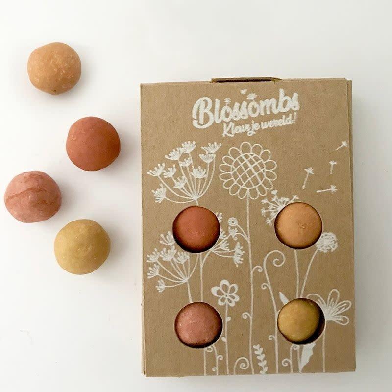 Blossombs Blossombs Geschenkdoosje met 4 zaadbommetjes