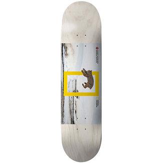Element Nat Geo Westgate Cat 8.1 Skateboard Deck