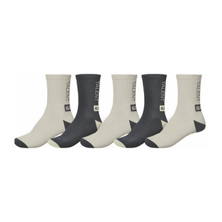 Globe Wasted Talent Socks 5 Pack Assorted