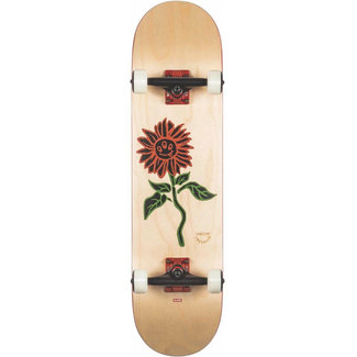 Globe G2 Natural Bloom 8.0 Skateboard Complete