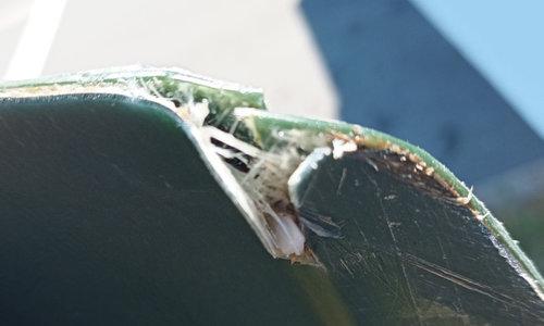Wakeboard repair
