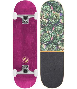 """BTFL 8.125"""" Plants Complete Skateboard Complete"""