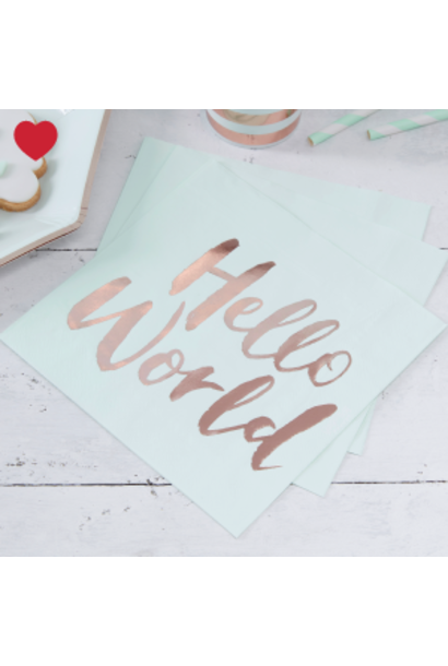 Hello world babyshower servetten (20st)