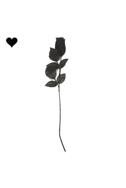 Black Rose creep it real -  Ginger Ray