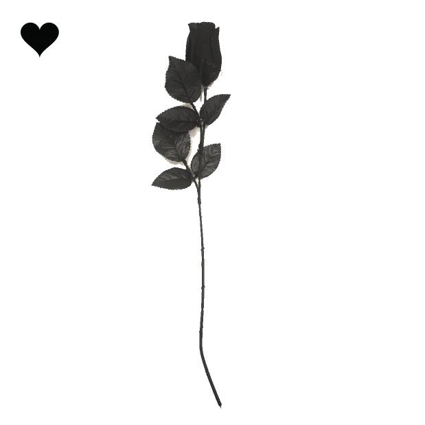 Black Rose creep it real-1