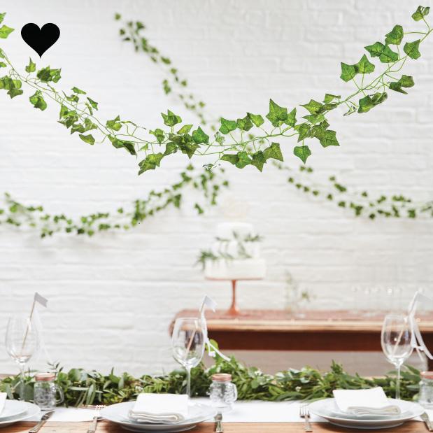 Decoratieve klimop 2m (5 st) Beautiful Botanics Ginger Ray-2