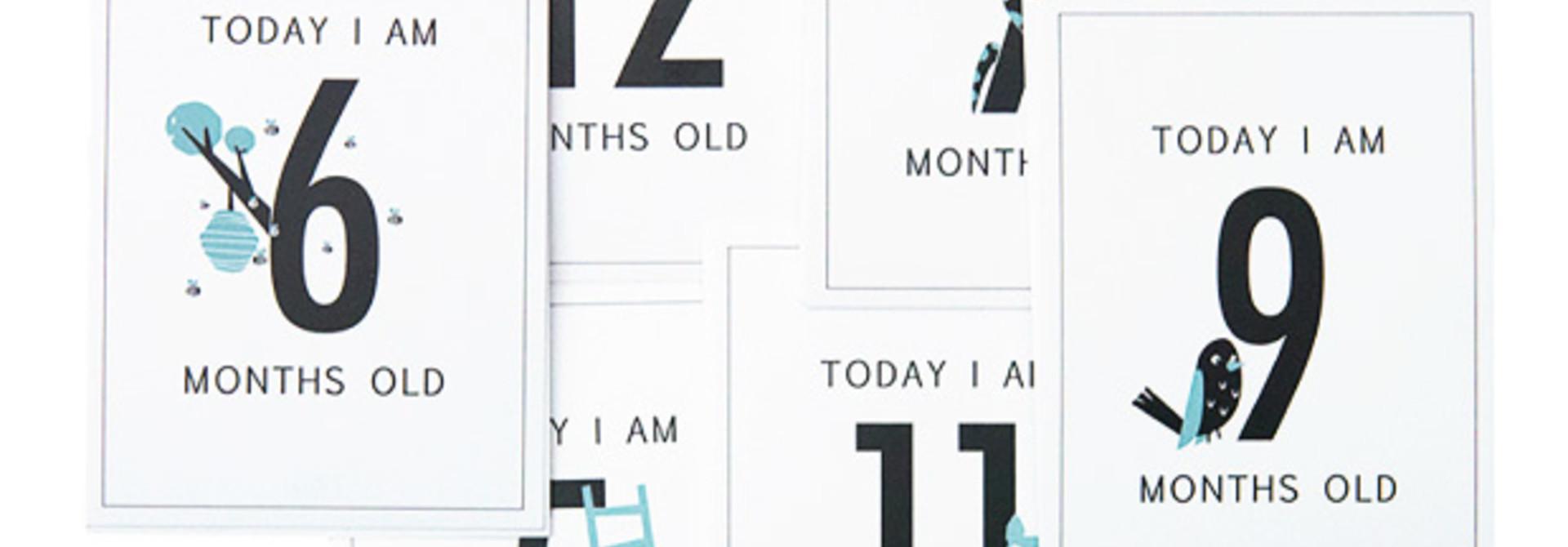 Baby Milestone Kaarten jongen (12st)