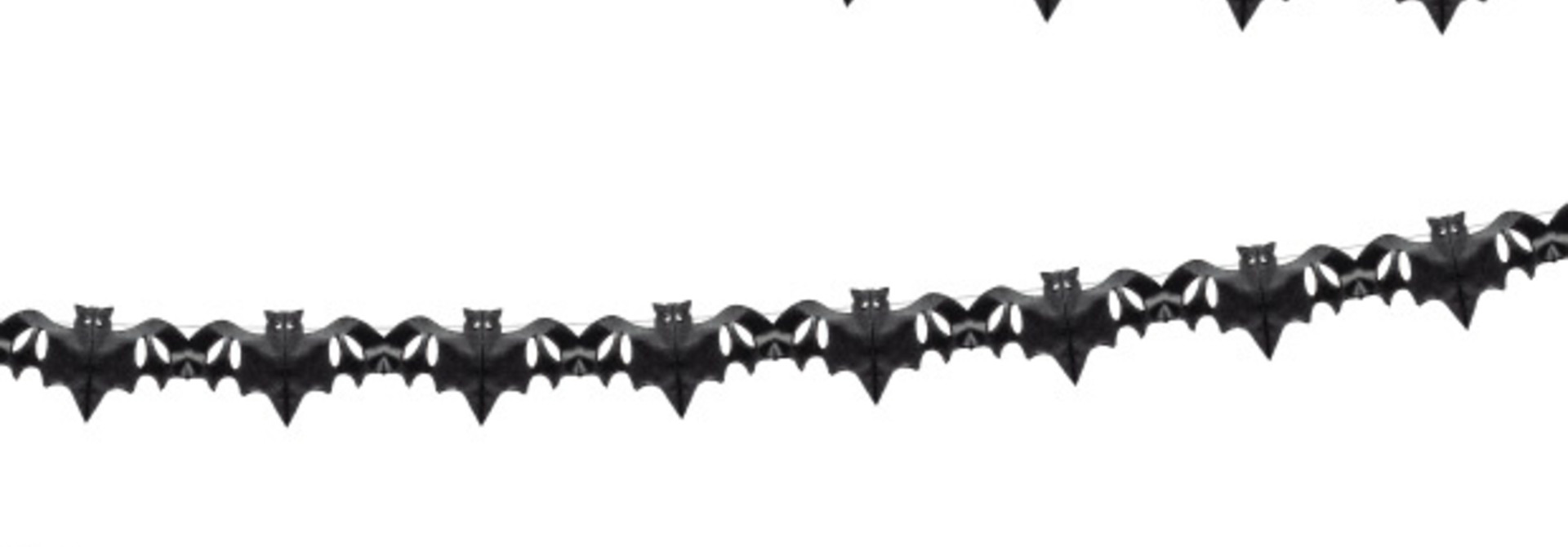 Slinger vleermuizen