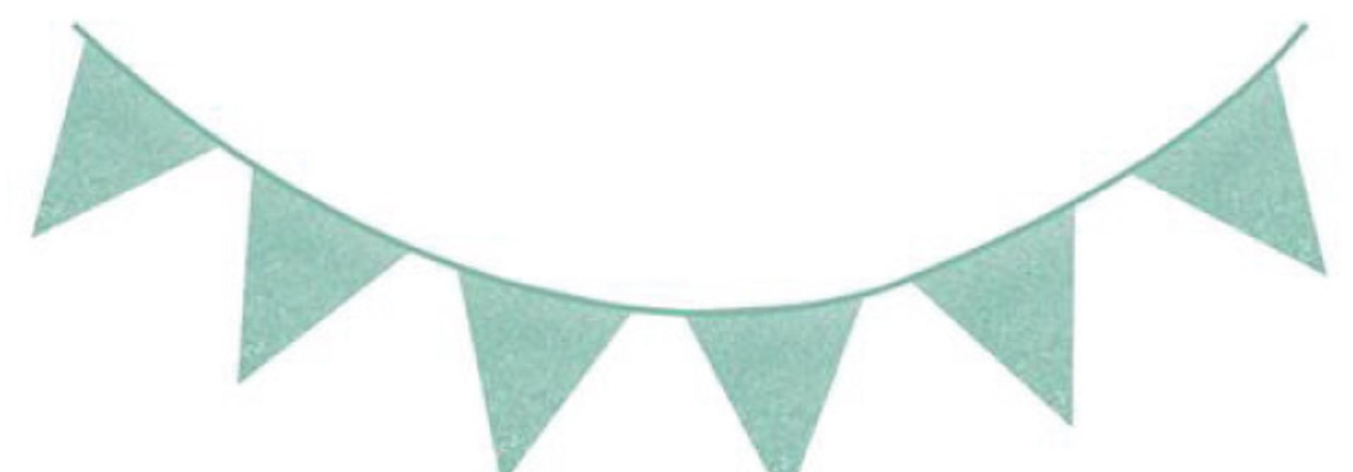 Glitter slinger mint  (6M)