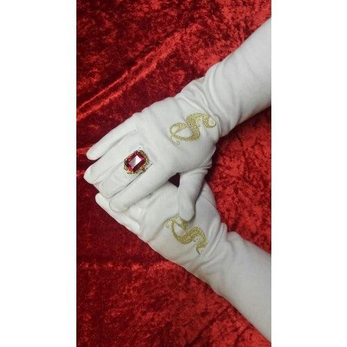 Handschoenen voor de Sint!