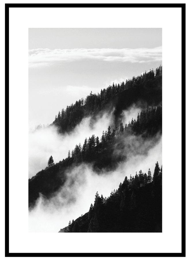 Fog Forest Poster