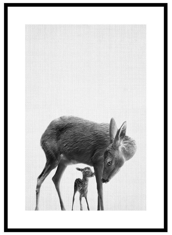 Animal Deer Poster