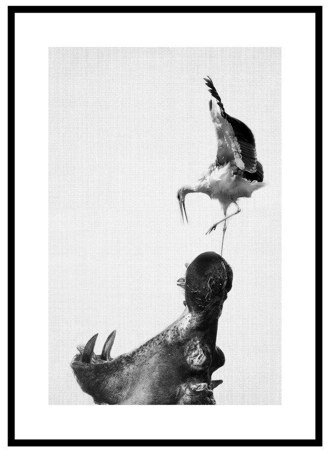 Hippo Art Poster