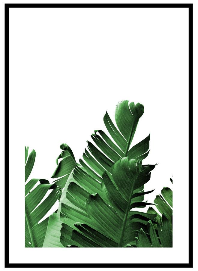 Tropisch Blad Groen Poster