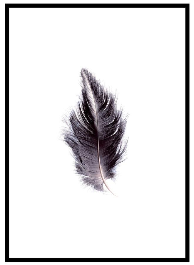 Poster met Zwarte Veer