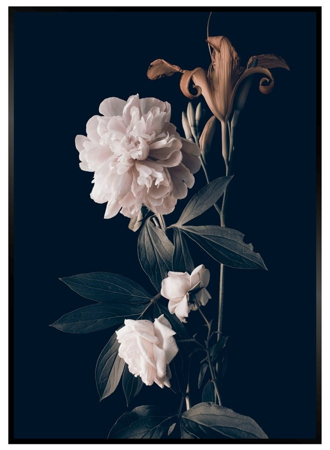 Flower zwart Poster